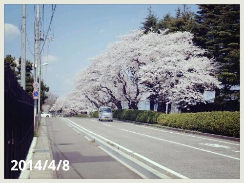 fc2_2014-04-09_12-59-00-656.jpg