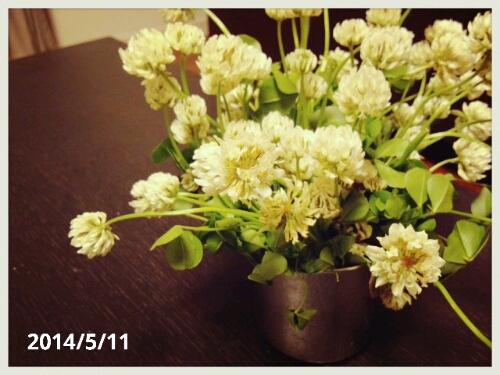 fc2_2014-05-12_10-52-12-970.jpg
