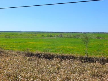 7草原地帯0601