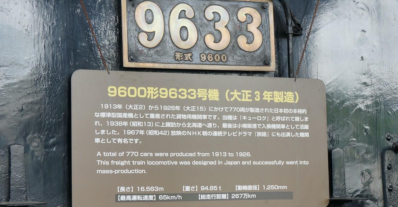 DSC04053 (1)