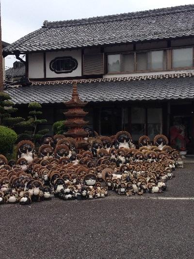 shigaraki_2014052021433161d.jpg