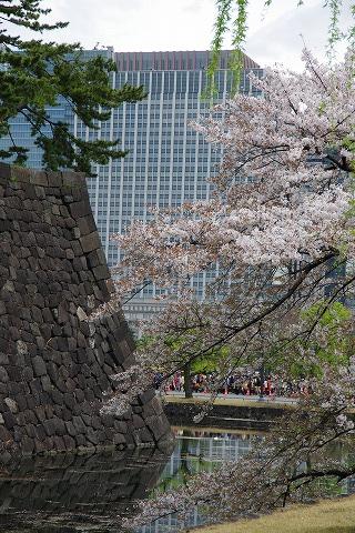 2014-04-05-1-IMGP0737.jpg