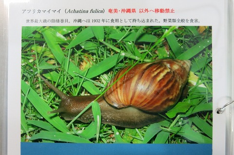 2014-08-05-IMG_1266.jpg