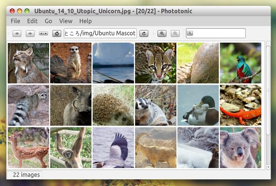 Phototonic Ubuntu 画像ビューア サムネイル Squarish View