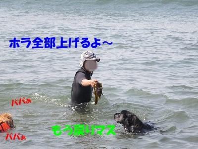 IMG_1801.jpg