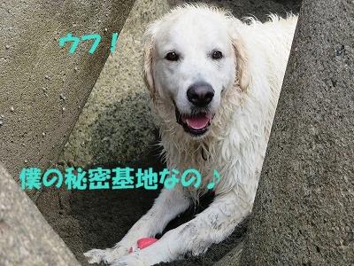 IMG_2104.jpg