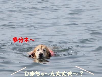 IMG_2265.jpg