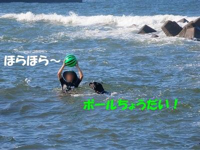 IMG_2630.jpg