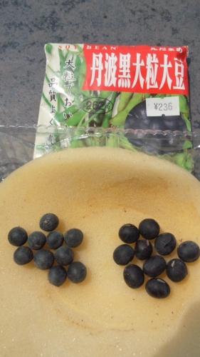 2014-6 黒豆