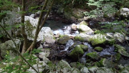 河内の風穴2