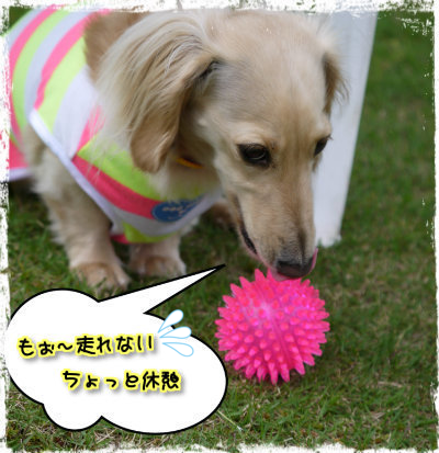 20140610203224805.png
