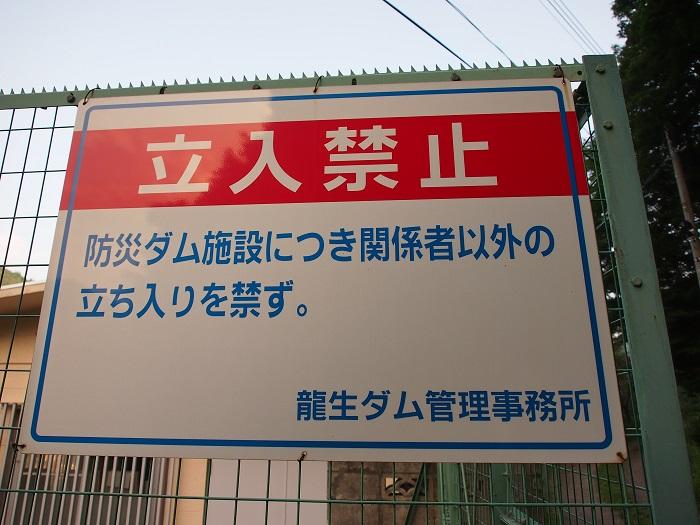 ryi13.jpg