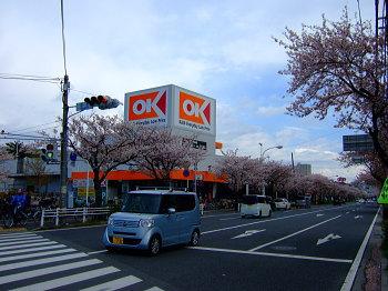 saku040504.jpg
