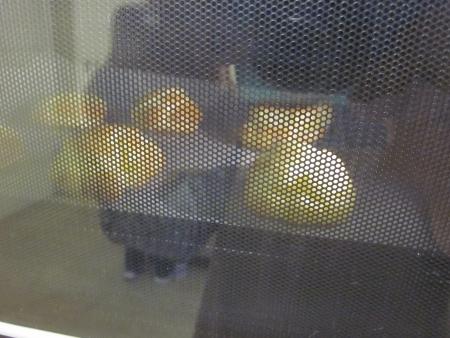 オーブンの中のシュークリーム