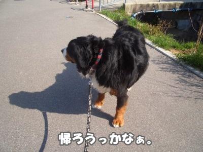 CIMG3710.jpg