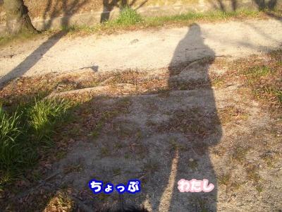 CIMG3809.jpg