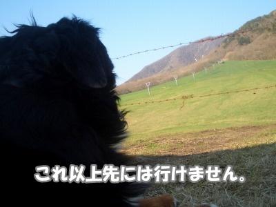 CIMG5724.jpg