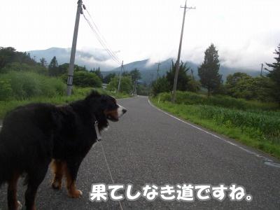 CIMG7846.jpg