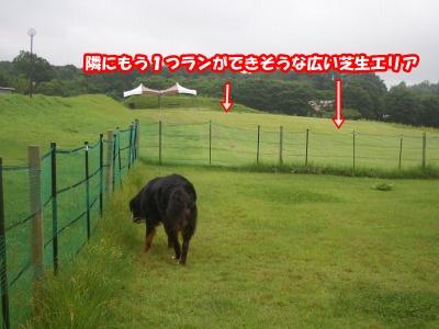 CIMG8358.jpg