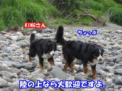 RIMG0166.jpg