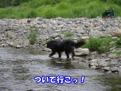 RIMG0186.jpg