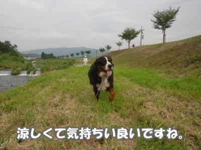 RIMG0469.jpg