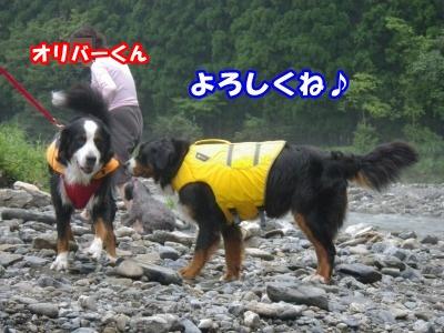 RIMG0513.jpg