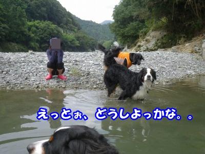 RIMG0893.jpg