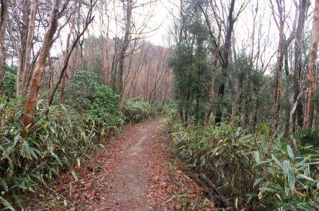 高鈴山への道