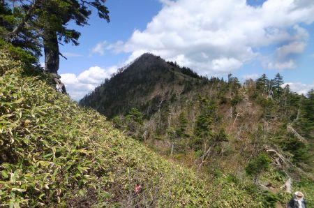 四阿山山頂付近