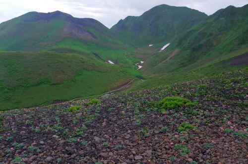 コマクサ咲く斜面からムーミン谷を俯瞰