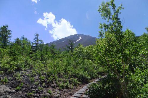 御庭から富士山