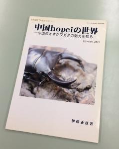 中国hopeiの世界