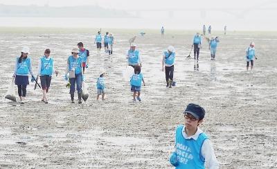 干潟の清掃