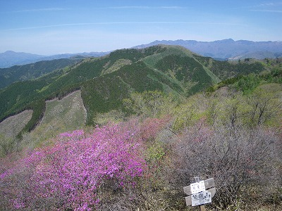 熊鷹山から根本山