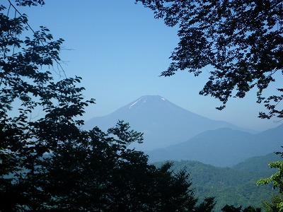 でも富士山が見えた