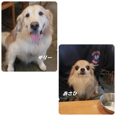 2014-8-68.jpg