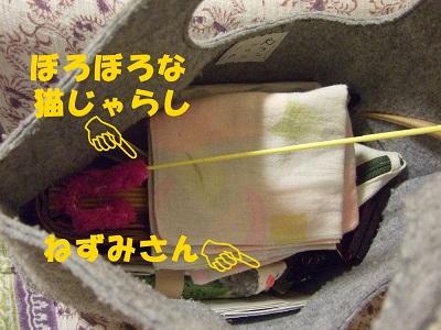 SCF5195.jpg