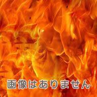 『セカイノオワリ』RAIN┃イメージ画像