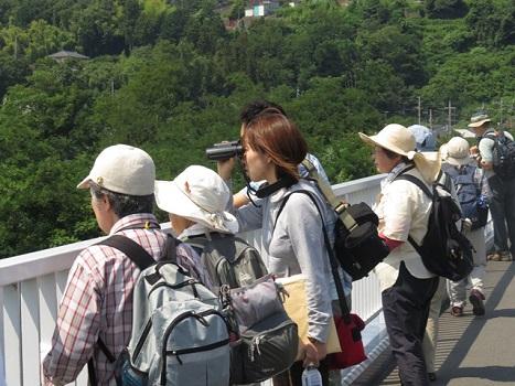 IMG_0017羽村堰探鳥会