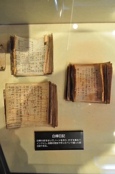 WHAT IS JAPAN   - 日本再発見の旅 --白樺日記