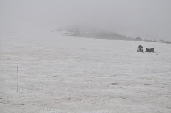 WHAT IS JAPAN   - 日本再発見の旅 --雪原