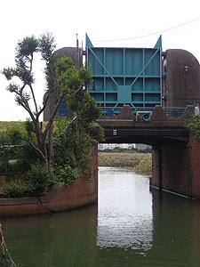 20081012_2.jpg