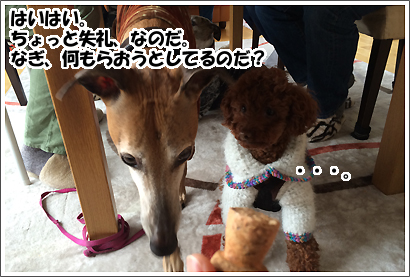20140308_11.jpg