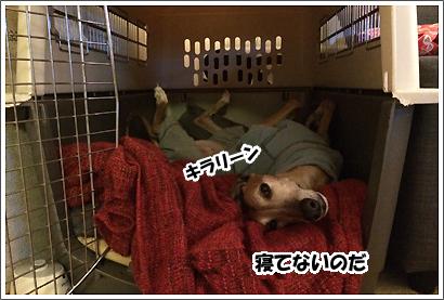 20140308_27.jpg