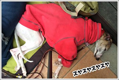 20140322_12.jpg