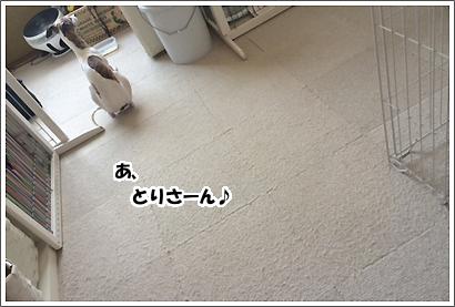 20140401_11_1.jpg
