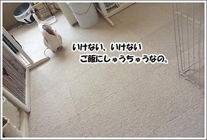 20140401_12_1.jpg