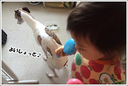 20140401_19_1.jpg