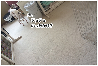 20140401_7_1.jpg